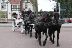 de_viervoeter_glaslandauer-vier-friese-paarden