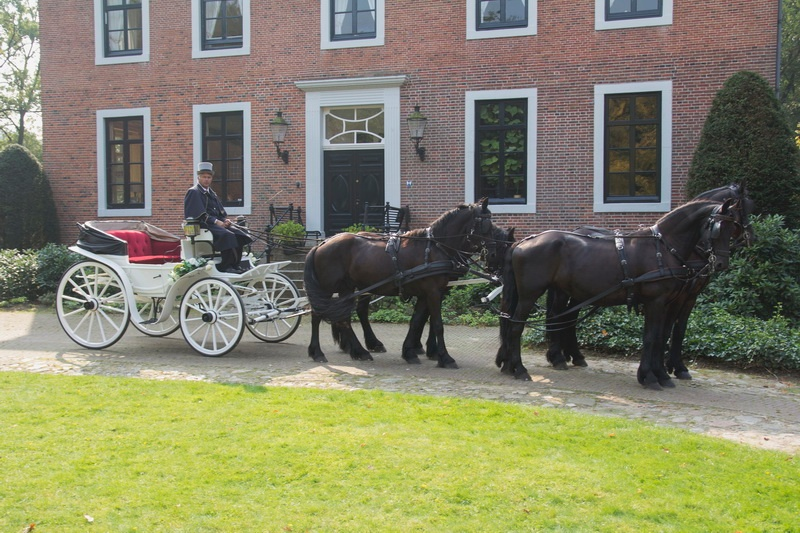 De Viervoeter vierspan Friese paarden trouwkoets