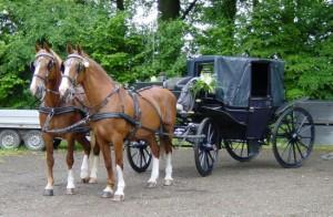 Landauer met voskleurige paarden