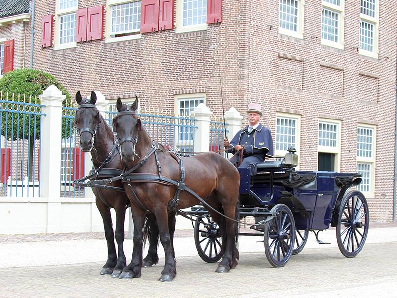 Landauer blauw met Friese paarden